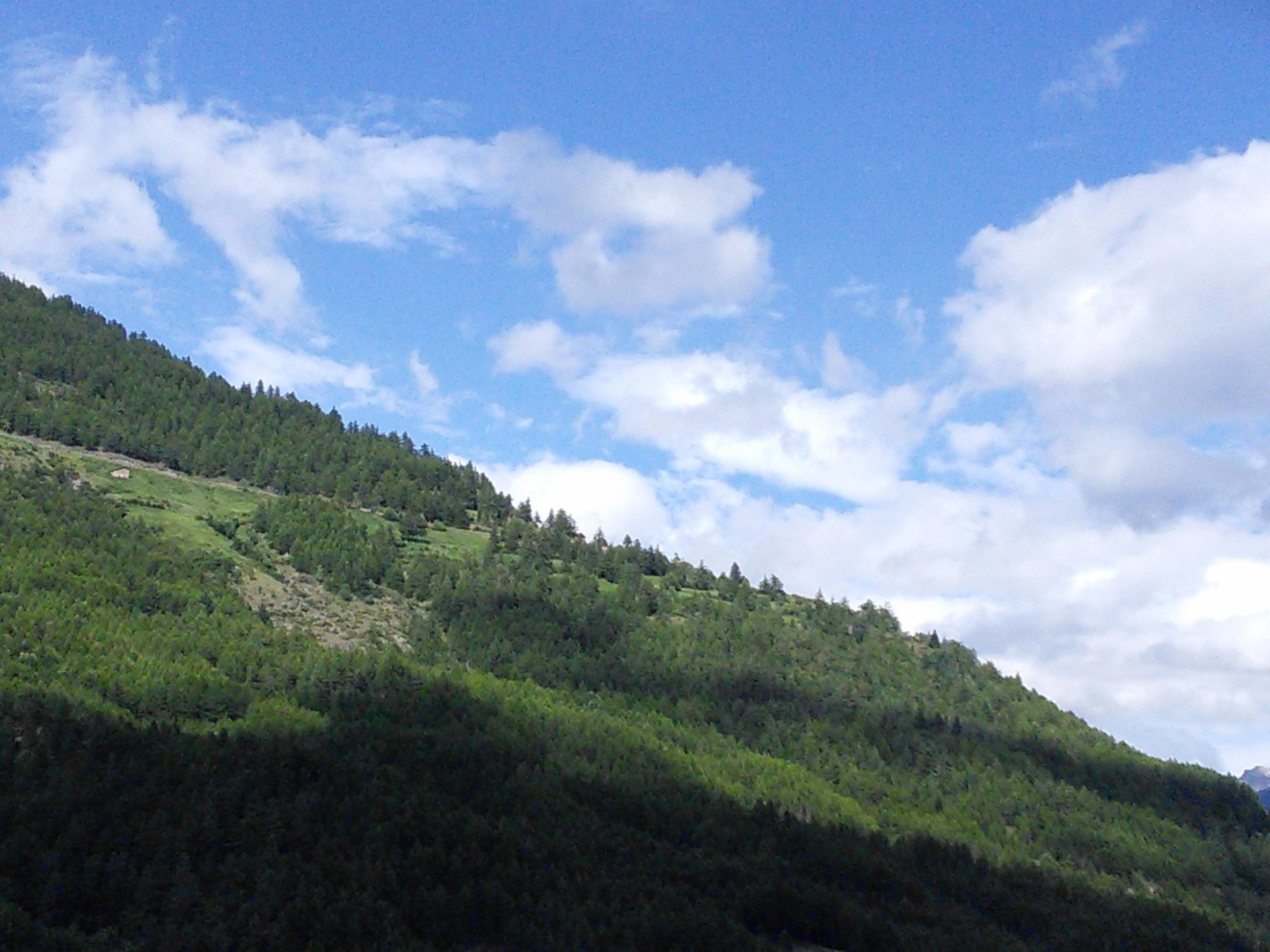 Petite maison sur la montagne